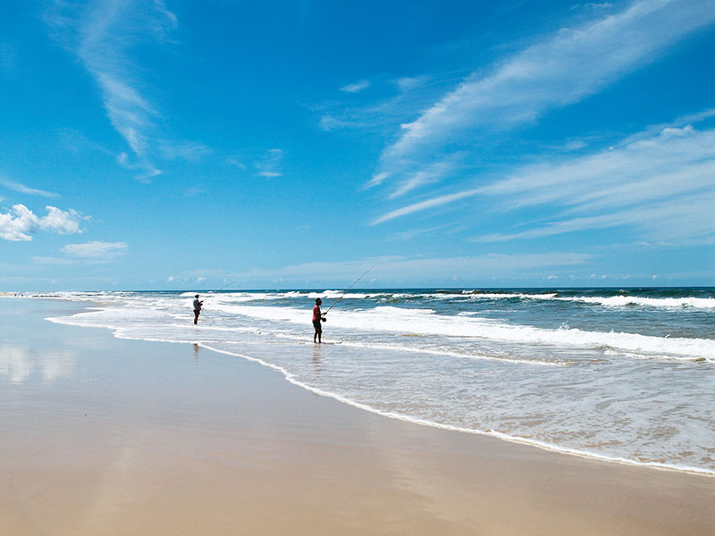About Fraser Island